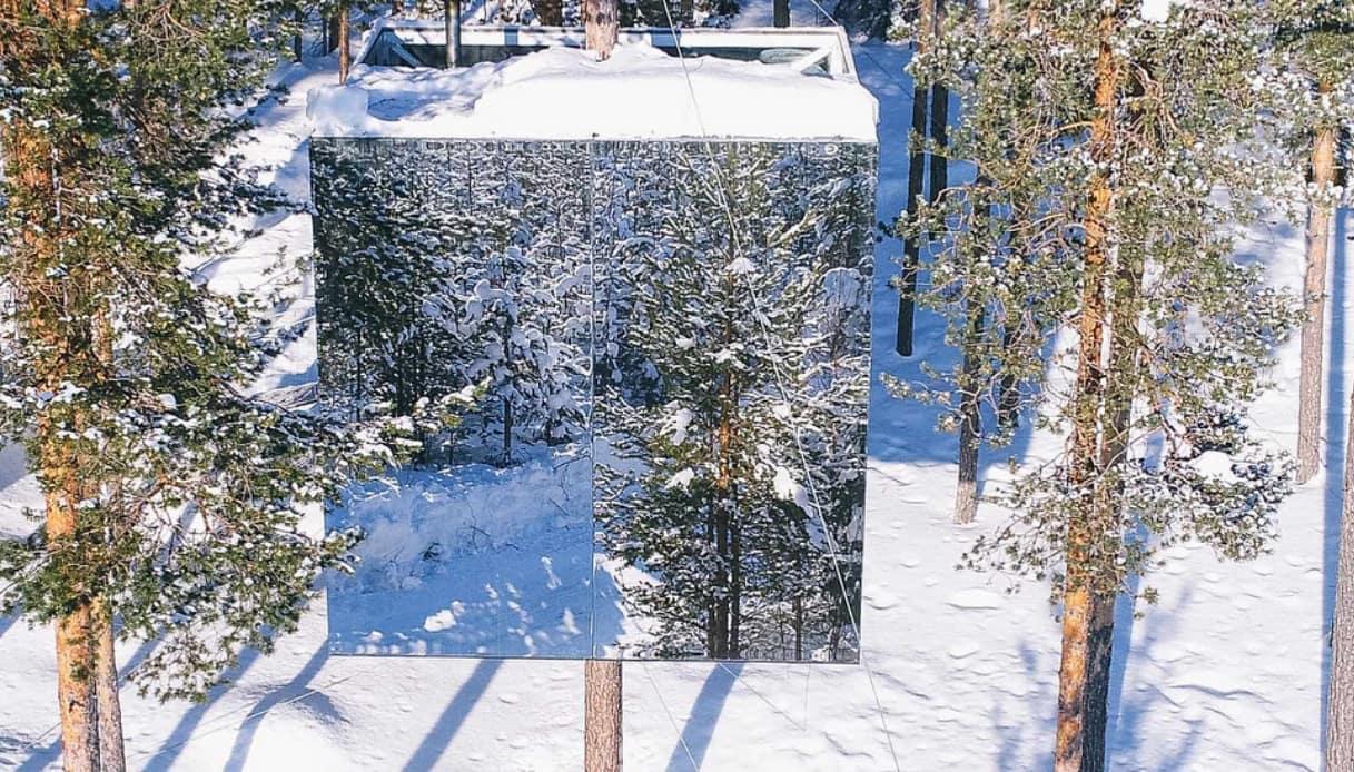 Treehotel - Svezia