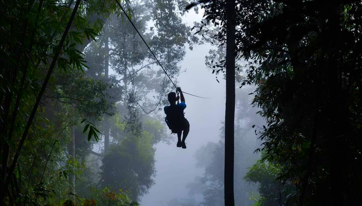 Laos - Zipline nella foresta