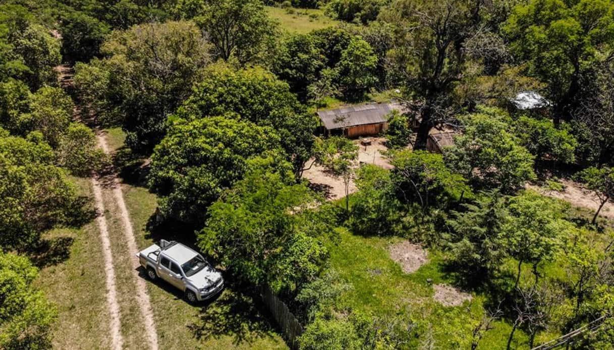In Argentina nascerà il parco più selvaggio di tutto il Sud America
