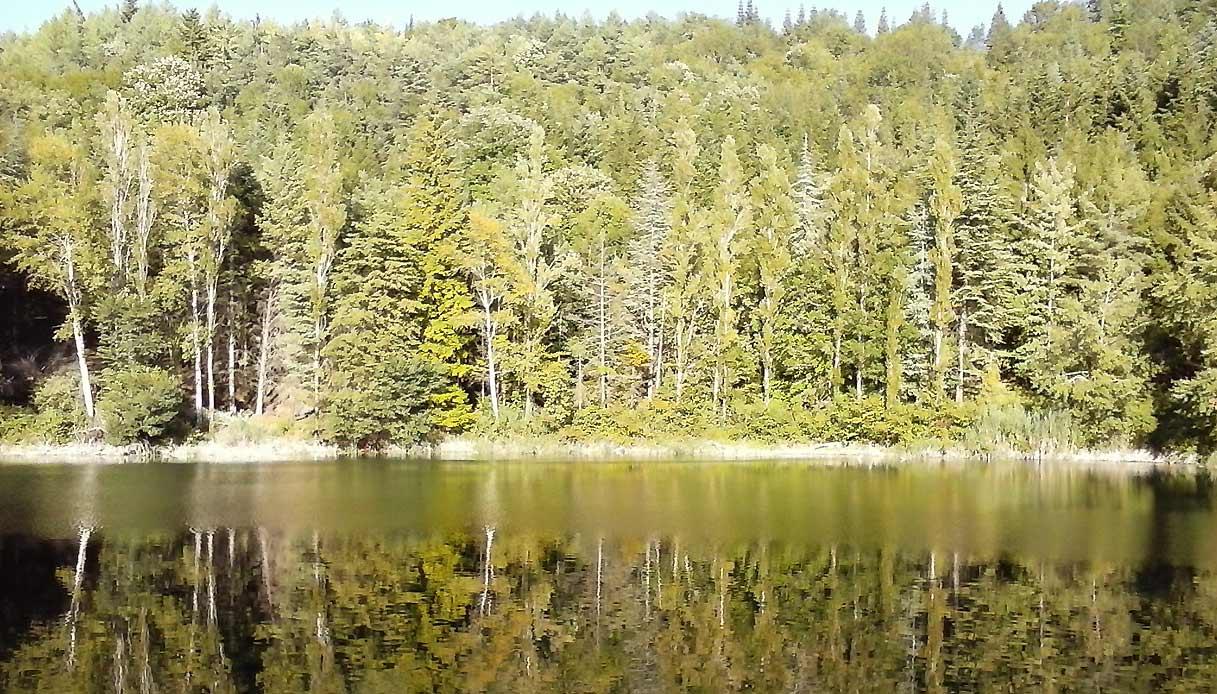 Lago_Lagustelli_Percile