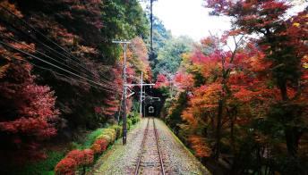 Sulla ferrovia a cremagliera più ripida del Giappone