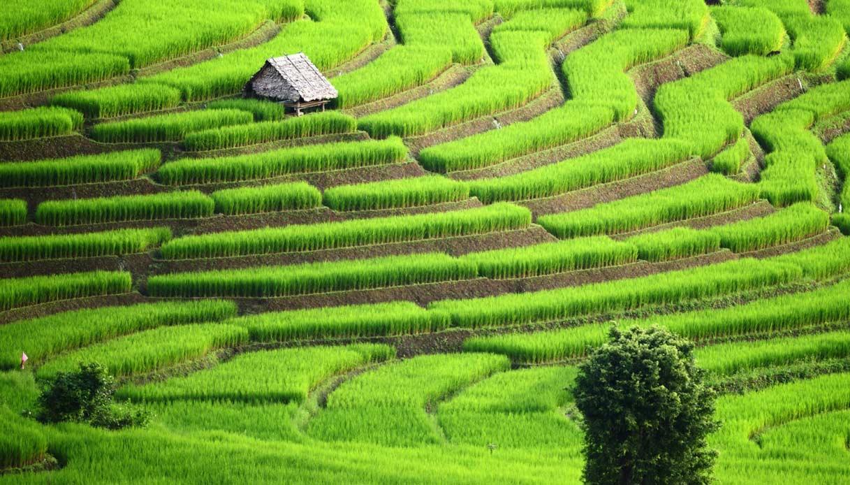 thailandia-campagna-risaie-villaggi