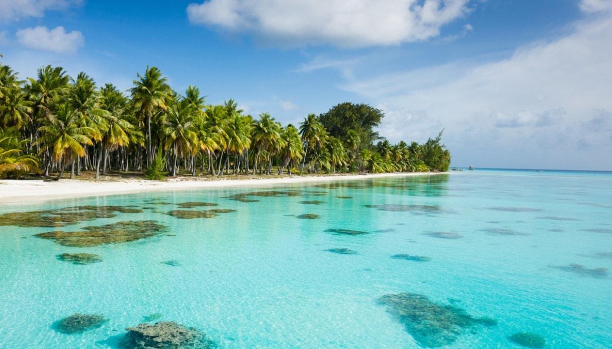 Alla scoperta di Fakarava, la laguna blu Matisse della Polinesia Francese