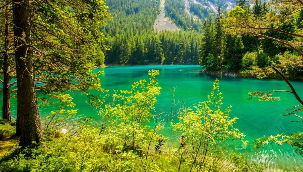 Grüner See, il lago austriaco che esiste solo quattro mesi l'anno