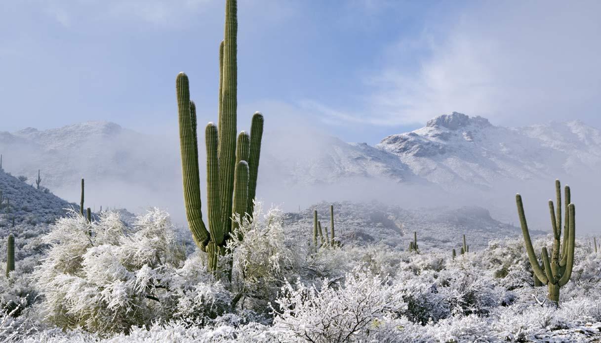 neve-deserto-arizona