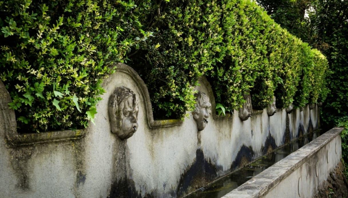 Fontane Torcrescenza