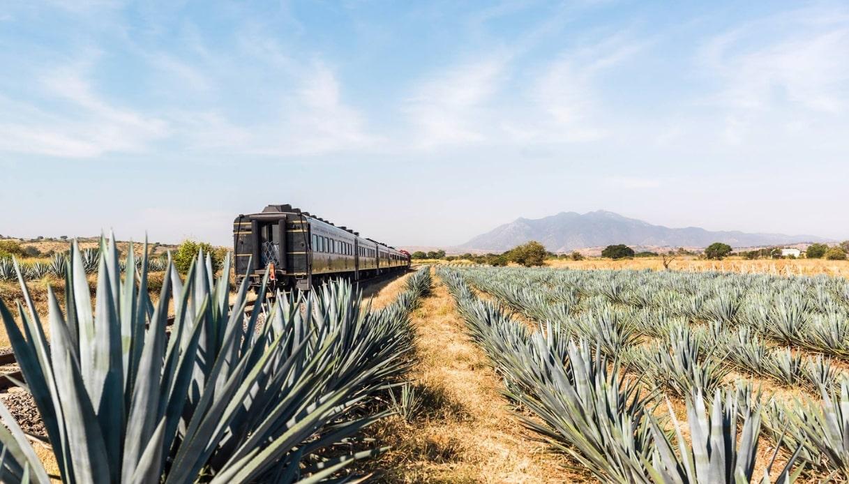 In Messico si viaggia a bordo del Treno della Tequila