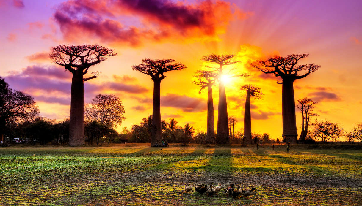 Madagascar viaggio vacanze Pasqua 2019