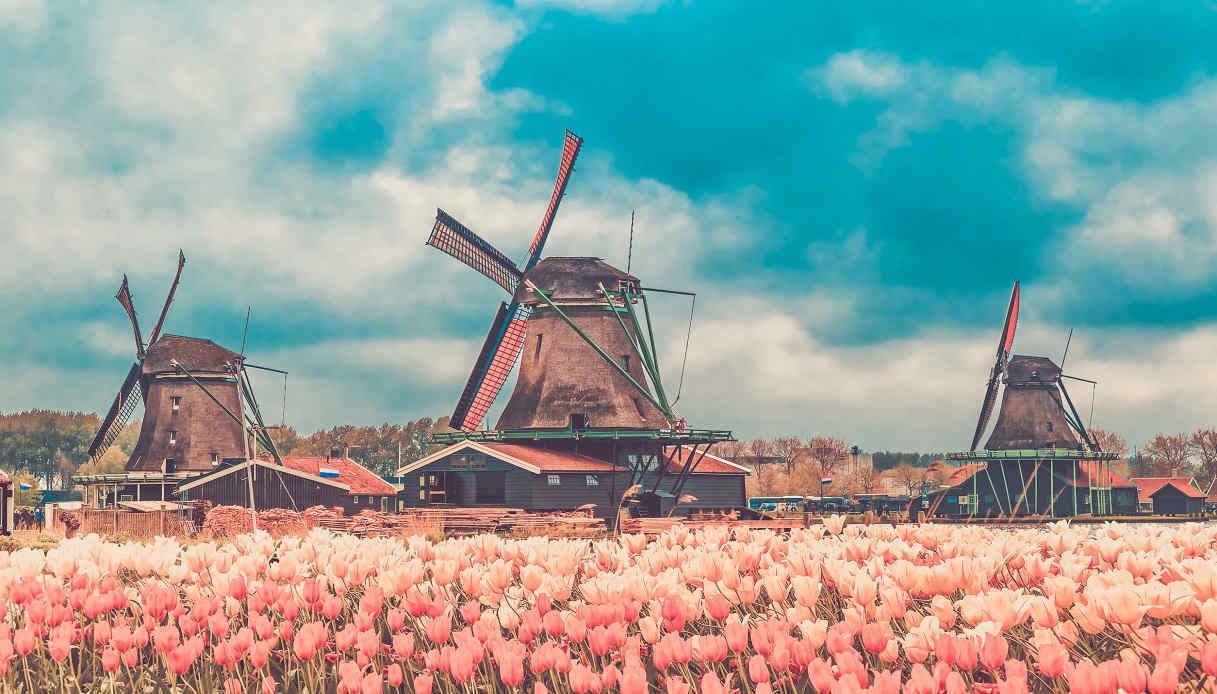 Amsterdam: cosa fare