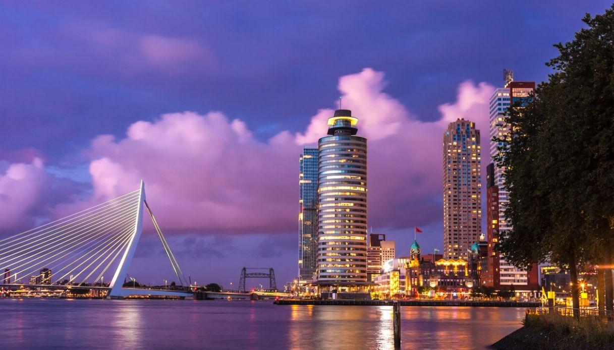 Rotterdam vista dall'alto: il tour sui tetti della città