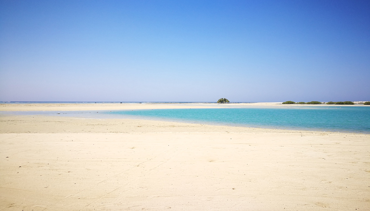 egitto.parco-wadi-el-gemal-marsa-alam-mangrovie