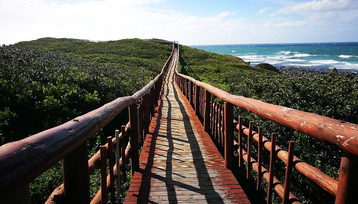 sudafrica-riserva-Nahoon-Point