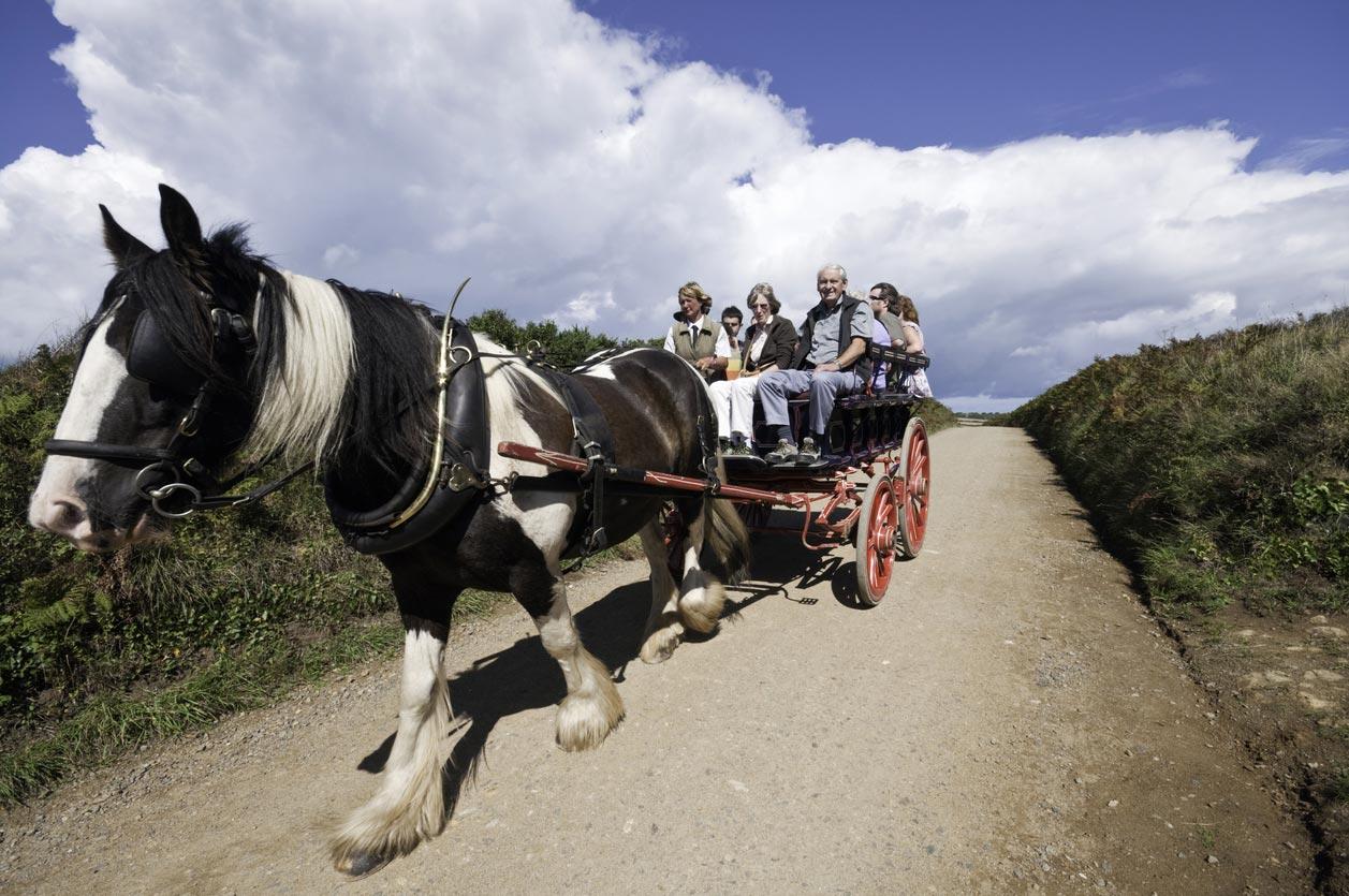 In carrozza sull'Isola di Sark