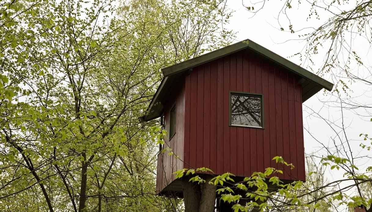 Le più belle case sugli alberi si trovano in Norvegia