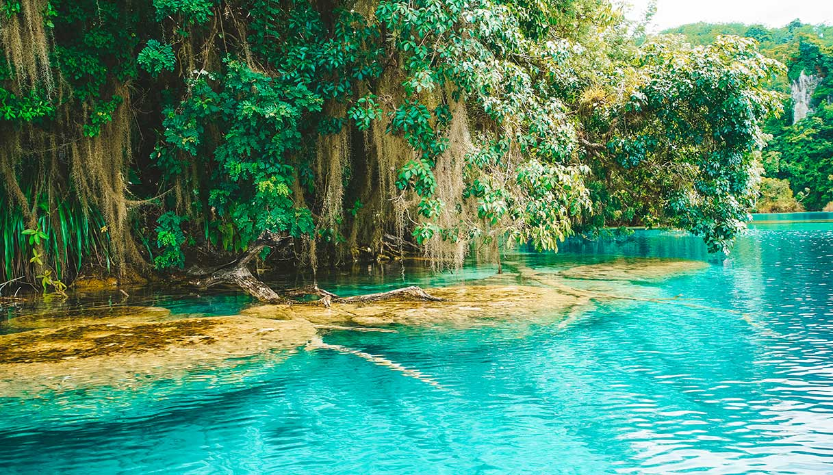 Laguna Miramar Chiapas