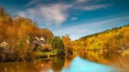 In Inghilterra è nato il primo percorso ufficiale per ammirare il foliage