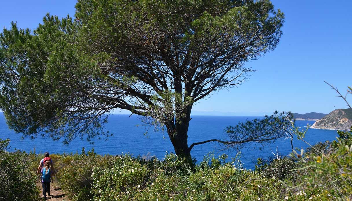 Isola-Elba_-Trekking-Capo-Stella