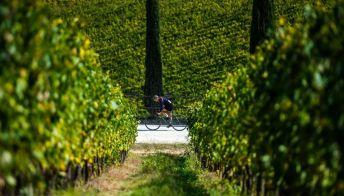 Viaggi in bici: il percorso e l'itinerario permanente dell'Eroica