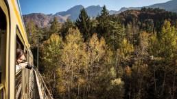 In autunno si parte a bordo del Treno del foliage