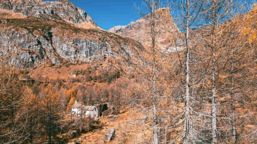 Vedere il foliage sull'Alpe di Devero