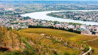 5 cose da fare a Bordeaux tra vino, storia e architettura