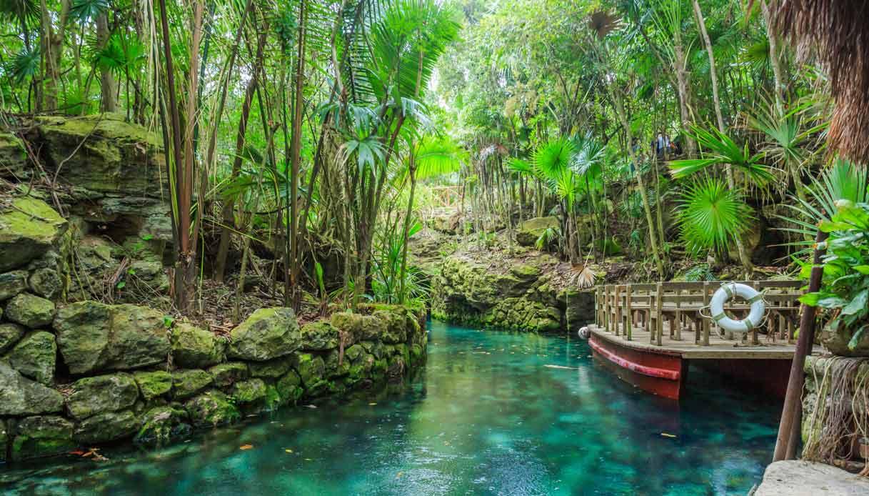 Foresta nei dintorni di Cancun