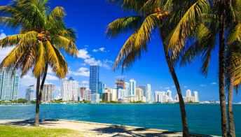 Miami, 5 esperienze imperdibili per scoprire l'assolata città della Florida
