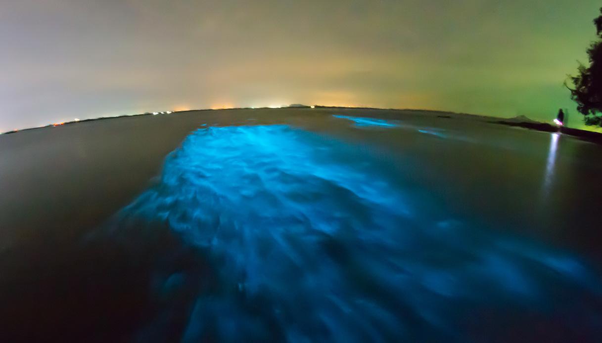 Questa baia, brilla di notte. Ed è un vero spettacolo