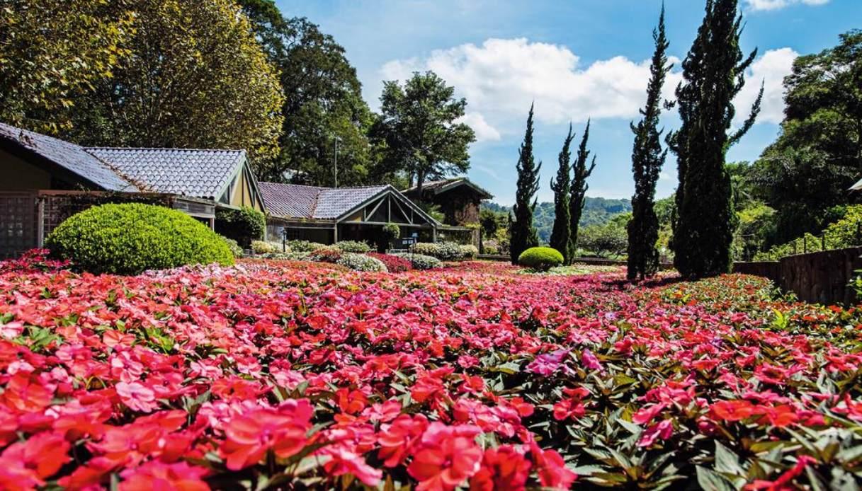 unique-garden