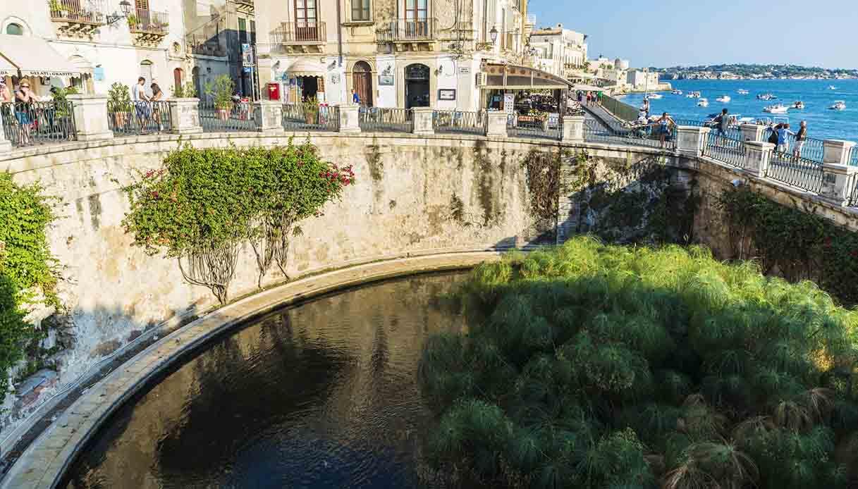 10 motivi per andare in Sicilia: la Fonte Aretusa ...