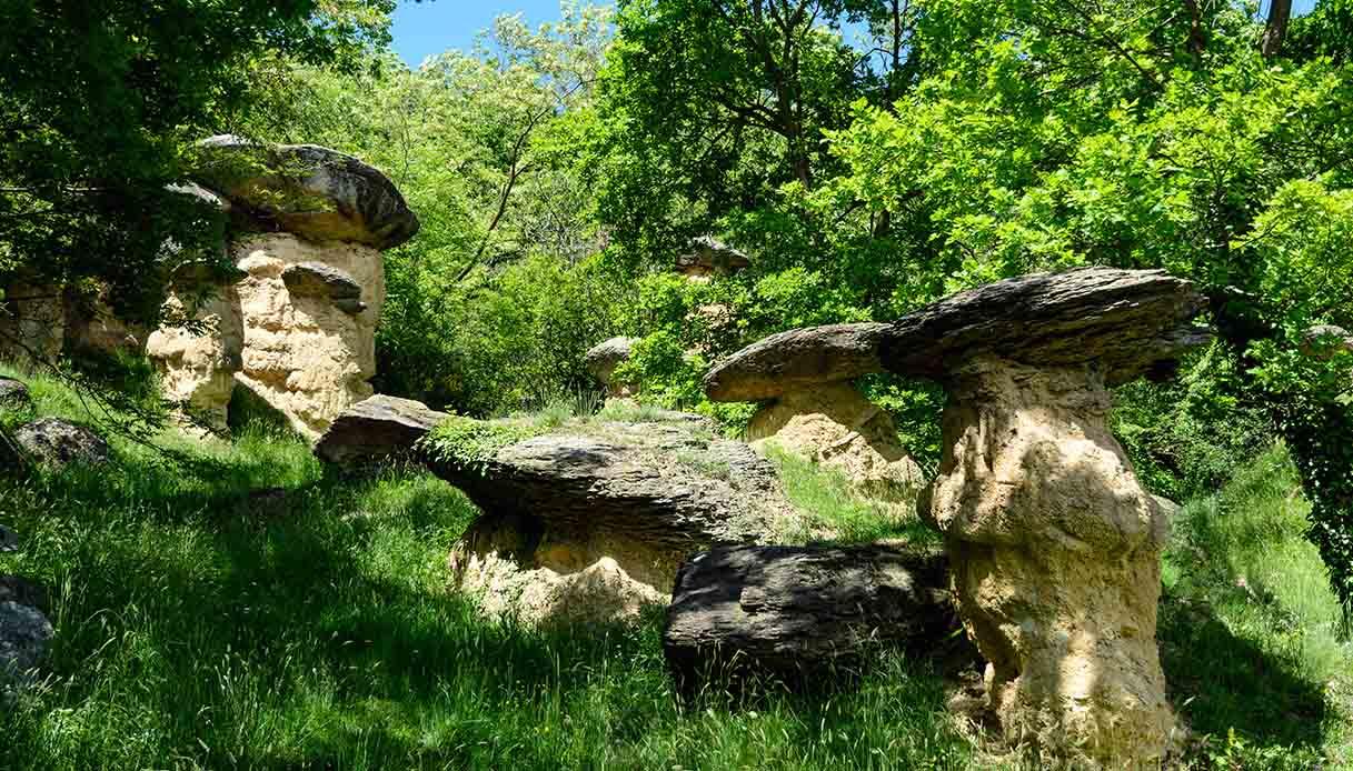 La storia dei funghi giganti della Val Maira