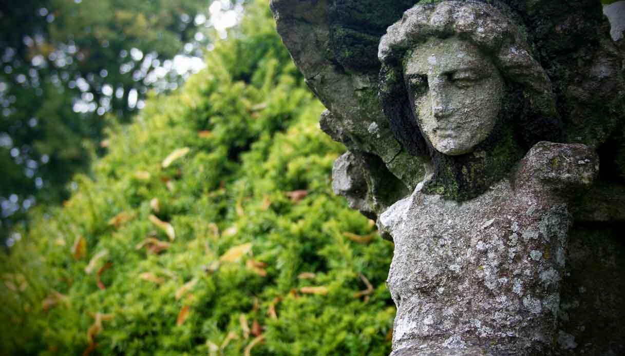 Foresta di Sherwood. Fonte: iStock