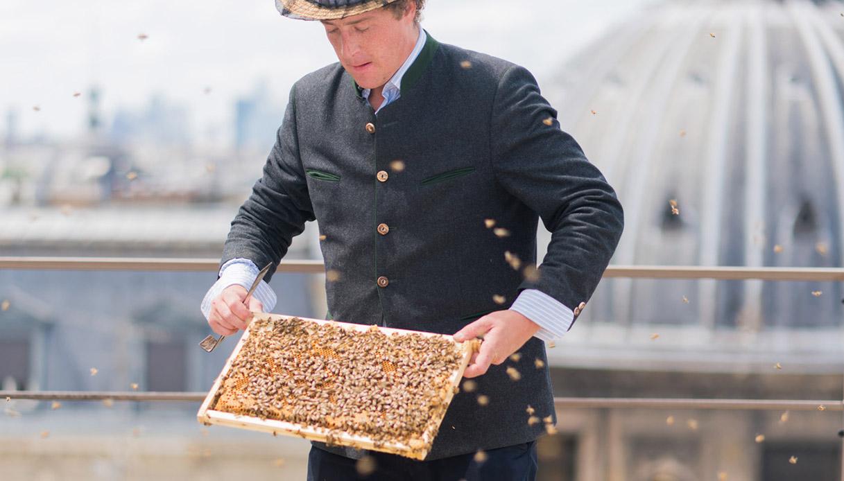 a Parigi, si allevano api