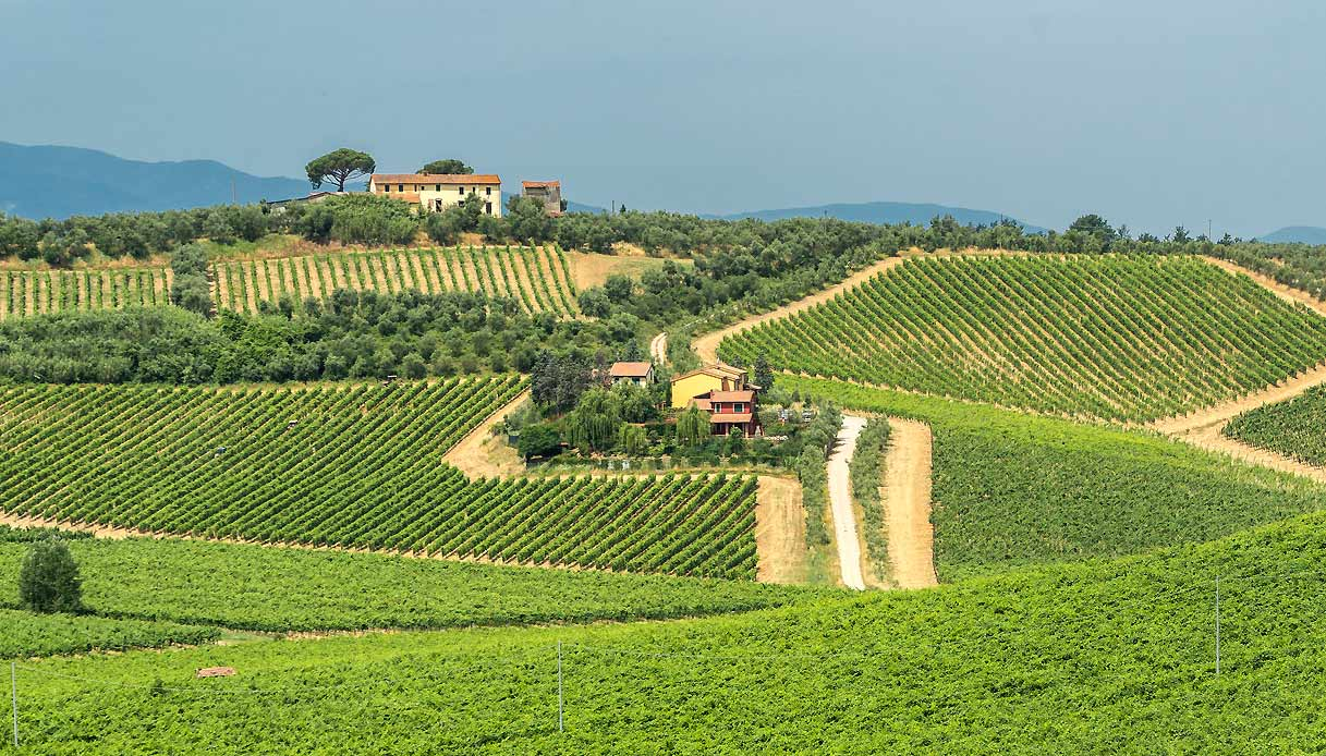 montalbano-colline-strada-vino-olio