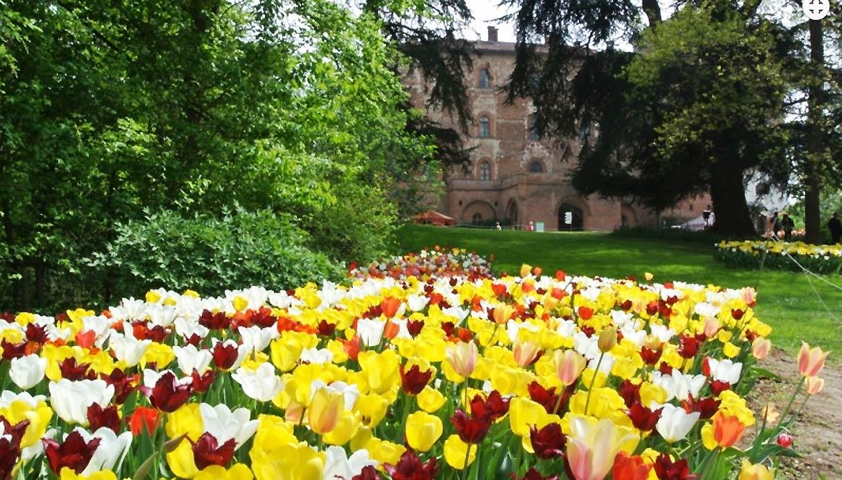 Castello-Pralormo-messer-tulipano-visita-virtuale