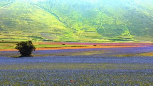 Viaggio nelle bellezze naturali dell'Umbria, cuore verde del Belpaese