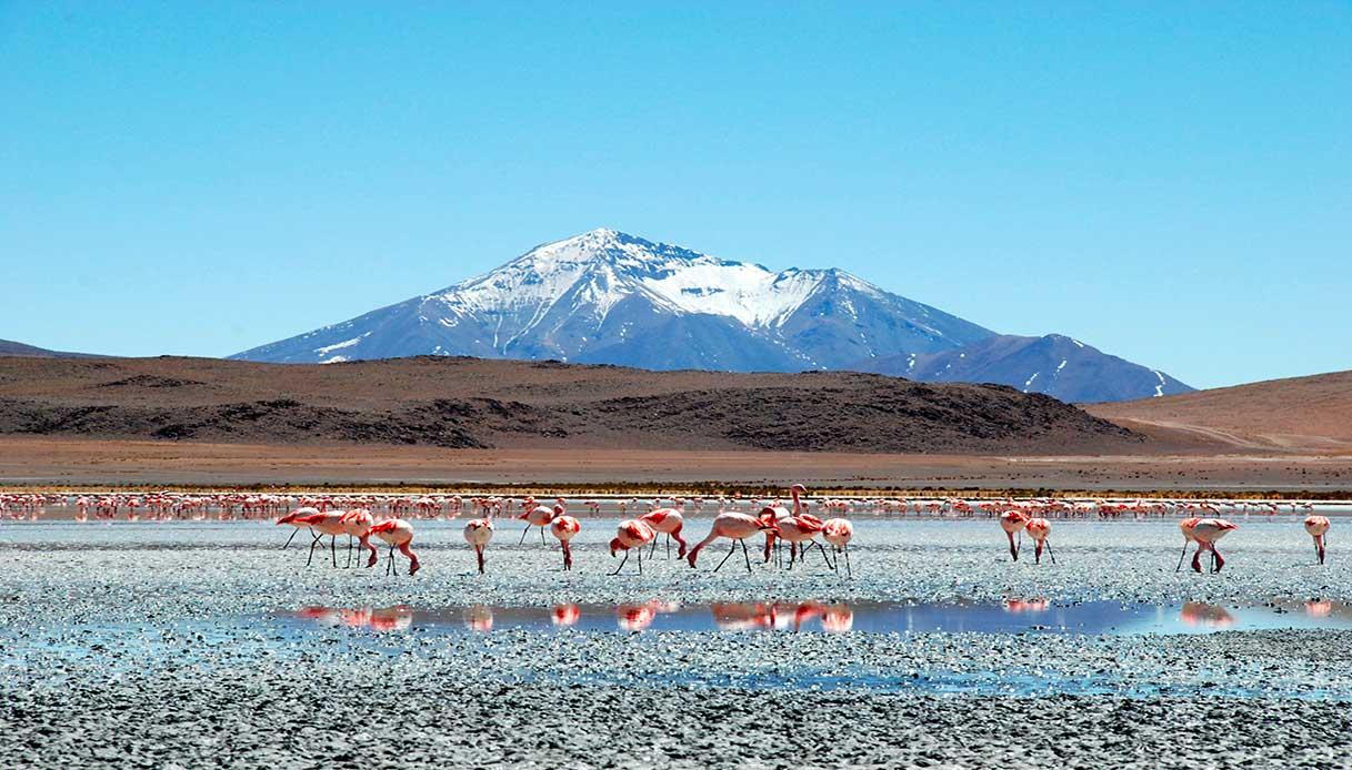 Lagune Ande Bolivia