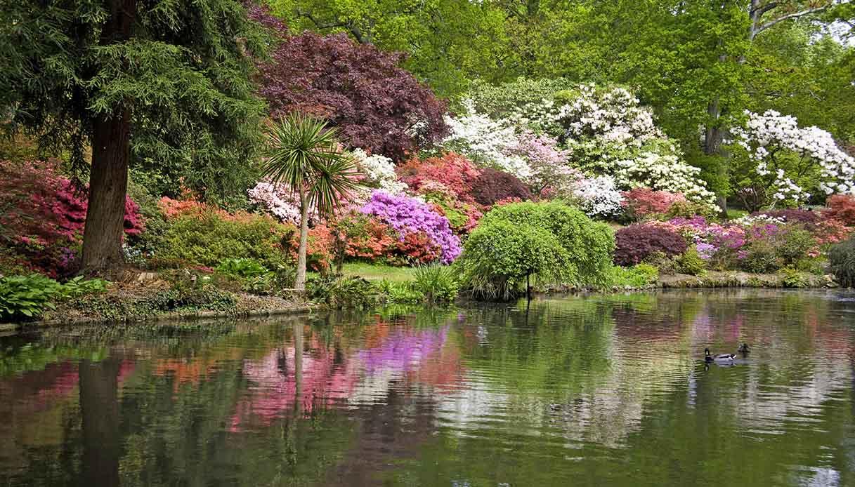 Esiste un giardino segreto nell'Hampshire. Ed è spettacolare