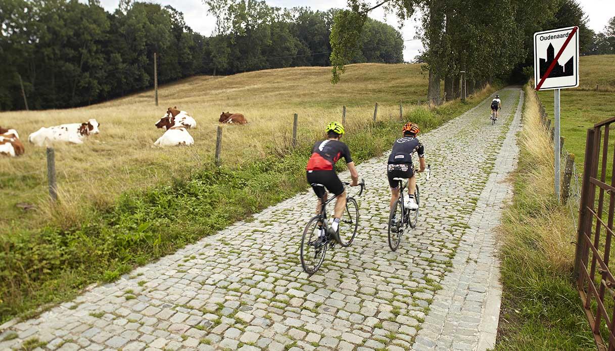 gara ciclistica fiandre