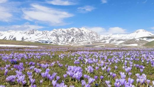 Parco nazionale del Gran Sasso e Monti della Laga, l'Abruzzo che incanta