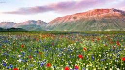 I Monti Sibillini, la natura selvaggia nel cuore dell'Italia