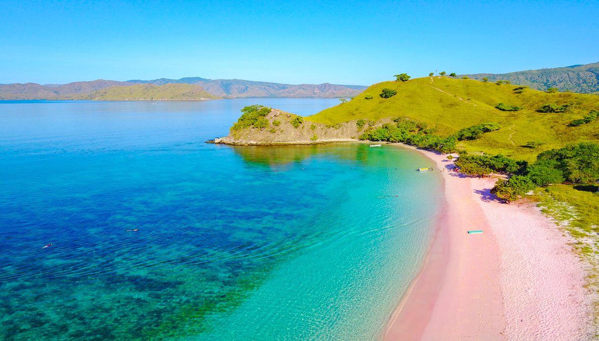 la spiaggia rosa delle bahamas