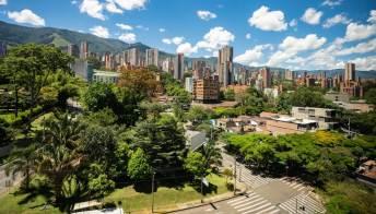 Piantare alberi in città abbassa le temperature. In Colombia -2 gradi