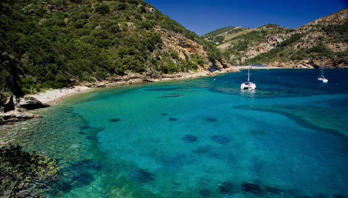 Rio-Marina-Elba-santuario-cetacei