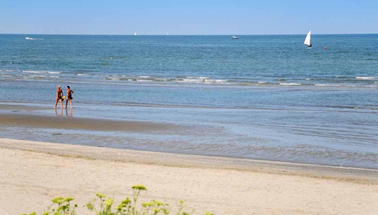 albarella-spiaggia