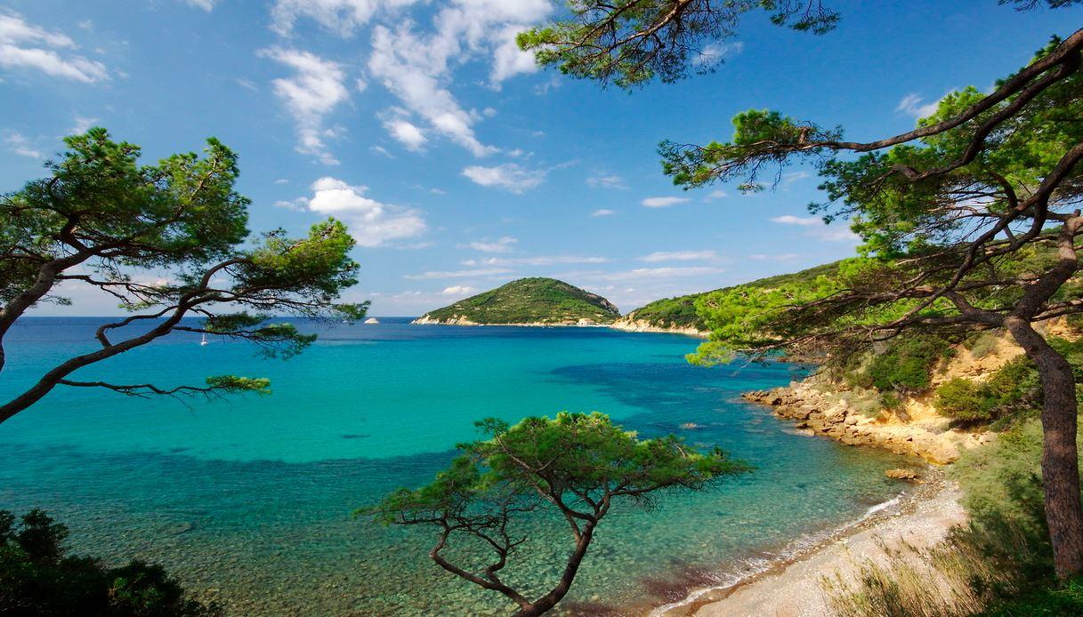 offerte traghetti estate scoprire isole italiane isola elba