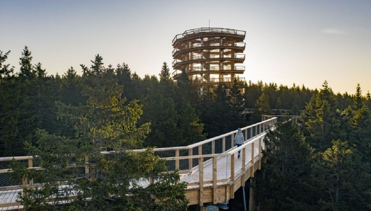 Torre sugli alberi in Slovenia