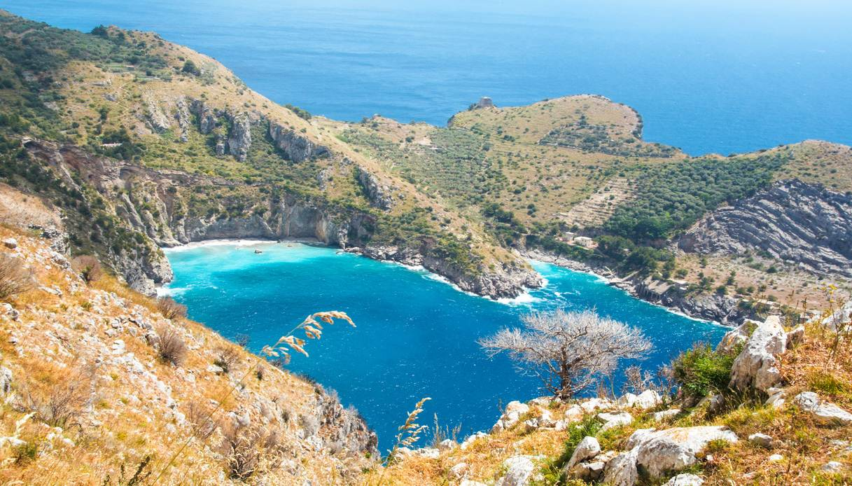 Le spiagge più selvagge e autentiche della Campania ...
