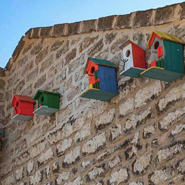 Balakhani-Azerbaigian-casette-uccellini