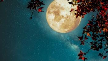 Ottobre a testa insù: il cosmo torna a dare spettacolo